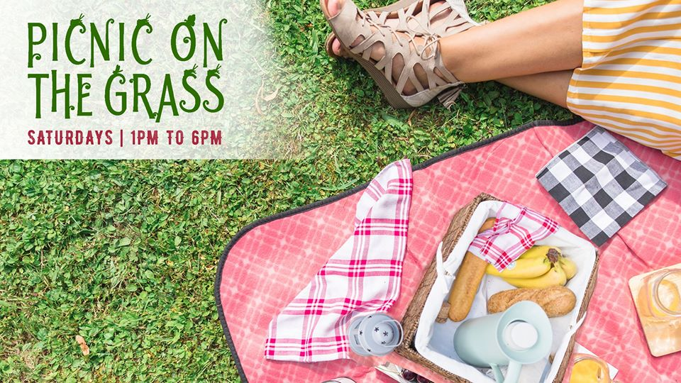 Picnic on the Grass event flier